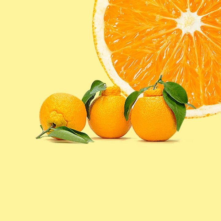 제주 산지직송 꿀맛 과일대전