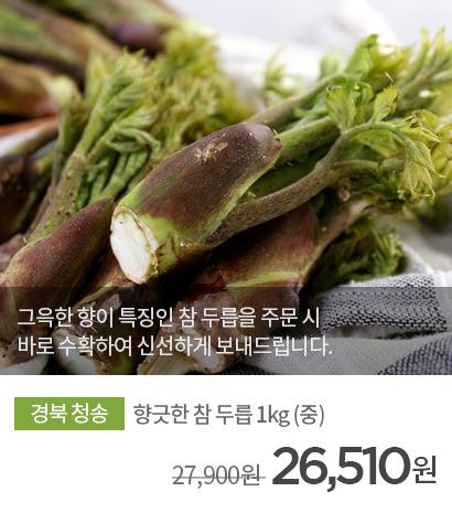구칠회님의 향긋한 참 두릅 1kg 상품 바로가기