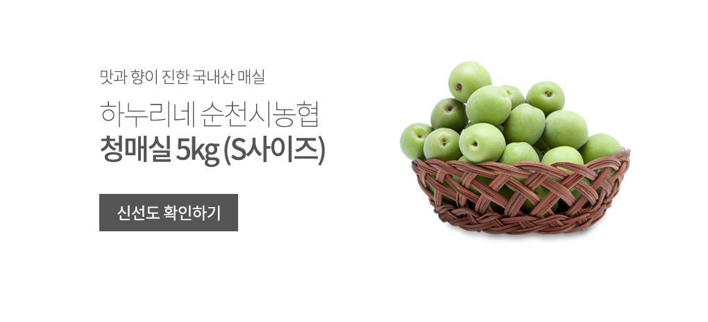 순천시농협연합 청매실 5kg S사이즈 상품 바로가기