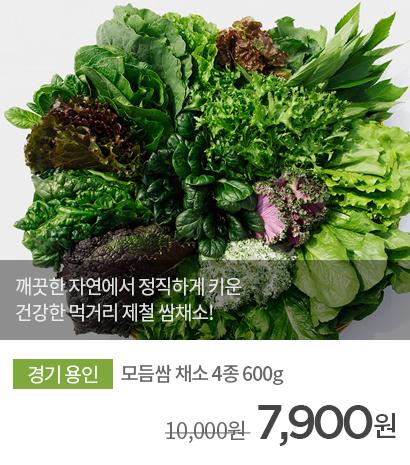 무농약 GAP인증 모듬쌈 채소 4종 600g 상품 바로가기