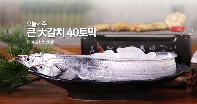 오늘제주 큰 大갈치 40토막(220g X 10미)