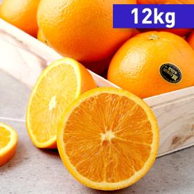 <em class='label_tv'>[방송]</em> [12kg/최대92과] 캘리포니아 고당도 블랙라벨 오렌지