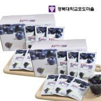 경북대학교 블루베리100 60팩