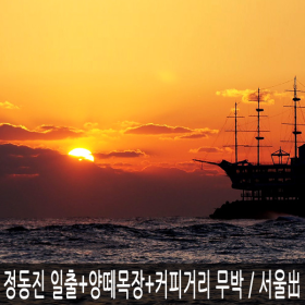 강원 강릉 정동진 해돋이(해맞이/일출)+대관령 양떼목장+강릉항 커피거리 무박 / 서울(시청/잠실)出