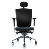 [듀오플렉스]BR-100L/천연가죽 의자