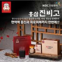 한국인삼공사 정관장 홍삼진비고 100g x 2 (쇼핑백포함)
