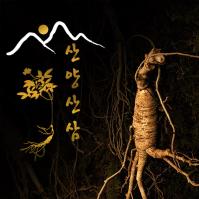 강원도영농조합 야산에서 자란 산양삼5년근 7뿌리