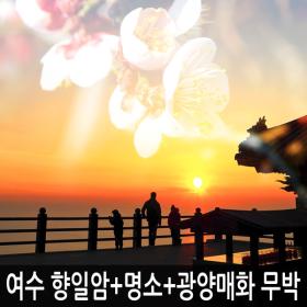 전남 여수 향일암일출+오동도+해상케이블카+광양매화축제 무박여행 / 해돋이/봄꽃축제여행 / 서울出